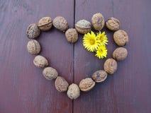 Amour et santé ensemble Images stock