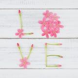 Amour fait à partir des fleurs roses Photos libres de droits