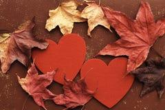 Amour fané Photographie stock libre de droits