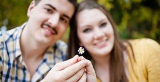Amour fleurissant Photo stock