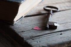 Amour, fond de valentine Image libre de droits