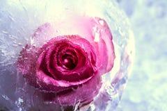 Amour gelé Photographie stock libre de droits