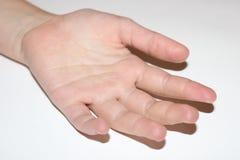 Amour intense Doigts de bébé Plan rapproché de la main ou des doigts de bébé d'isolement sur le blanc Photographie stock libre de droits