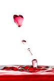 Amour liquide Photo stock
