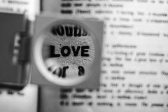 Amour magnifié de mot Images libres de droits