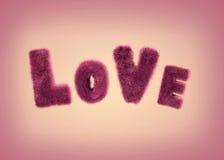 Amour pelucheux doux de lettres Photographie stock