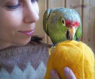 Amour pour des animaux familiers Madame et son perroquet Plan rapproché Images stock