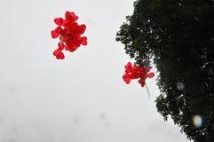 Amour romantique 34 de symboles de mariage de couples de mariage Photo libre de droits