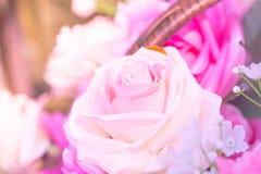 amour rose de bonbon à rose de blanc Image libre de droits