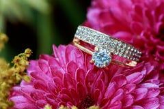 amour rose Valentine& x27 de dahlias d'anneaux ; le jour de s teinté et a ramolli - des noces de diamant Image libre de droits
