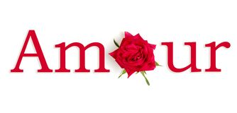 Amour rouge. The word LOVE with the O replaced by a flower in French Royalty Free Stock Photography