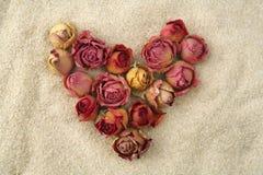 Amour sans fin Coeur des roses rouges sur le sable Photos stock