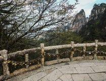 Amour-serrures aux montagnes Photographie stock