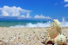 Amour sur la plage Photo stock