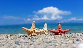 Amour sur la plage Photo libre de droits