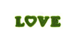 Amour - texte de mot de l'herbe Photographie stock libre de droits