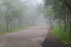 Amoureux dans le brouillard Photographie stock