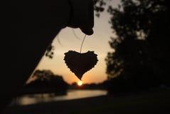 Amoureux de nature Photographie stock