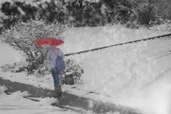 Amoureux de neige Photo stock