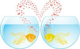 Amoureux de poissons illustration libre de droits