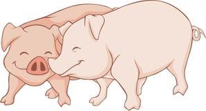 Amoureux de porc Photo stock