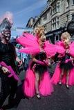 Amoureux roses dans la fierté homosexuelle 2011 de Brighton Photo stock