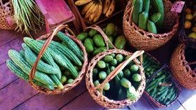 Ampalaya amaro della zucca dei canestri indigeni delle verdure di Filippine Fotografia Stock Libera da Diritti