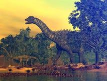 Ampelosaurus dinosaurs - 3D render. Ampelosaurus dinosaur walking among gingko trees by sunset - 3D render royalty free illustration