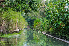 Amphawa bangkok avkrokar Thailand Arkivfoto