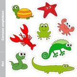 Amphibian set colorful. Amphibian colorful set  in vector. Under water animals and amphibians Royalty Free Stock Photo
