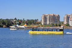 Amphibious bus and seaplane. In Victoria harbour royalty free stock photo