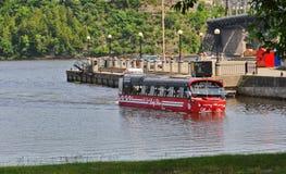 Amphibus дама Нырять на реке Оттавы стоковые фотографии rf