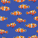 Amphiprioninae (Clownfish) blue seamless vector pattern Royalty Free Stock Image