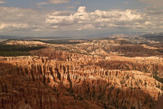 Amphitheater Bryce Canyon National Park. This is a close-up of hoodoos at Bryce Canyon National Park in Utah royalty free stock photography