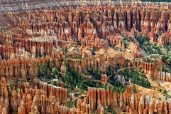 Amphitheater At Bryce Canyon Stock Images