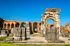 The Amphitheater of Capua, the second biggest roman amphitheater Stock Photo