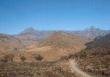 Amphitheater Drakenberg Mountains. In Royal Natal National Park, South Africa Stock Images