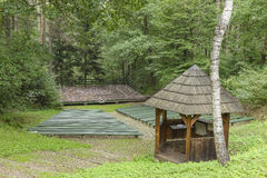 Amphitheatre in the forest. Small amphitheatre in the forest in open air museum in Nowy Sącz , Poland Stock Photos