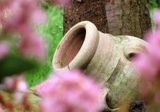 Amphora et fleurs Images libres de droits
