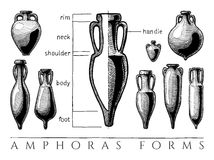 Amphora forms set. Vases shapes. Vector hand drawn illustration of amphoras and amphoriskos forms set. Parts of  typical ancient amphora, infographics Stock Photos
