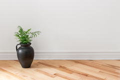 Amphora with green plant decorating a room Stock Photo