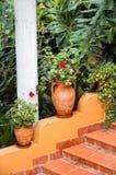 amphoras Стоковые Изображения RF
