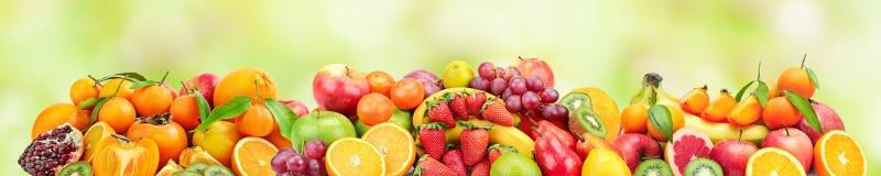 Ampia foto panoramica della frutta fresca per lo skinali su una parte posteriore di verde Fotografie Stock Libere da Diritti