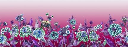 Ampia insegna di estate variopinta La bella lantana fiorisce con le foglie porpora su fondo rosa Fotografie Stock