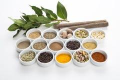 Ampia raccolta delle spezie differenti e delle erbe isolate su bianco Immagine Stock Libera da Diritti