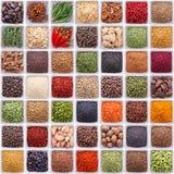 Ampia raccolta delle spezie e delle erbe differenti Immagine Stock