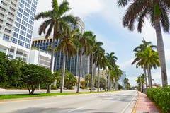 Ampia strada con le palme alte e le costruzioni moderne in Miami Beach, Florida Fotografia Stock