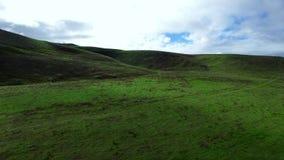 Ampia superficie a pascolo e colline verdi sparate da sopra stock footage