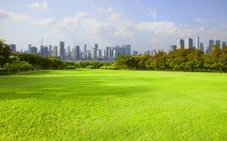 Ampia terra dell'erba verde del parco pubblico contro alta costruzione dentro Fotografia Stock