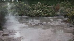 Ampia vista di uno stagno d'ebollizione del fango stock footage
